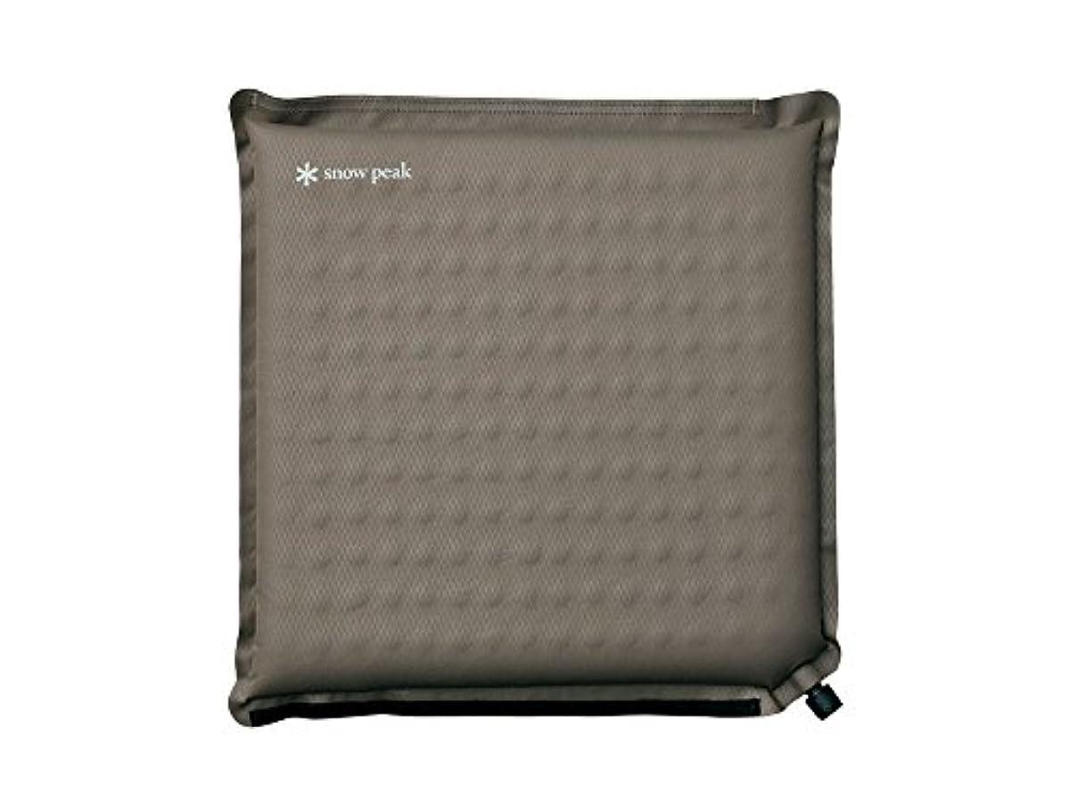 [해외] 스노우피크SNOW PEAK 매트&pillow TM-094R