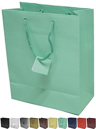 Novel Box® Aqua Matte Laminated Euro Tote Paper Gift Bag Bundle 8