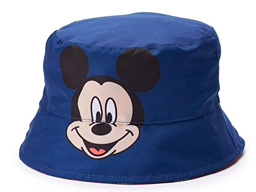 151dd3cfe6c Amazon.com  Disney Mickey Mouse Toddler Boy Hat Size 2T-4T Navy  Clothing