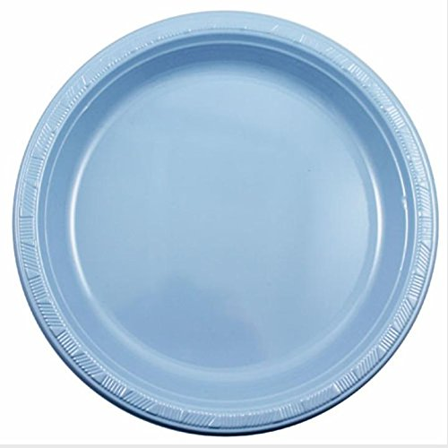 light blue dinner plates - 4