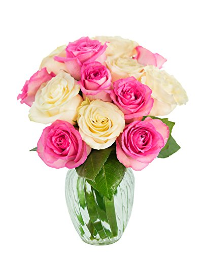 Bouquet of 12 Pink and White Roses (Farm-Fresh, Long-Stem) with Free Vase Included by Blooms2Door