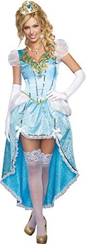Plus Size Fairy Dresses (Dreamgirl Women's Plus-Size Fairytale Ball Gown Costume, Blue, 3X/4X)