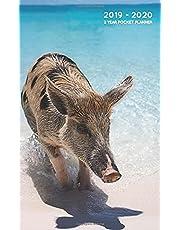 2019-2020 2 Year Pocket Planner: Monthly Calendar Organizer   Swimming Pigs Bahamas
