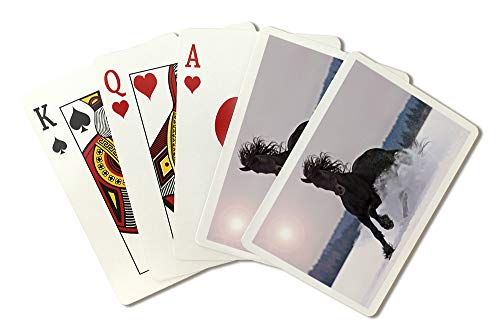 - Frisian Horse Galloping On Snow Photography A-91848 (Playing Card Deck - 52 Card Poker Size with Jokers)