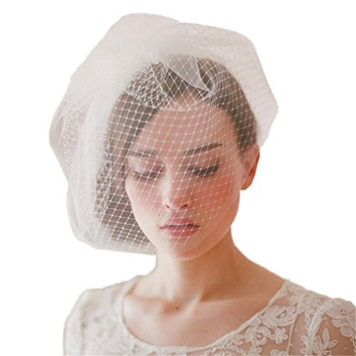 cereoth bridal birdcage bridal veil ivory fishnets
