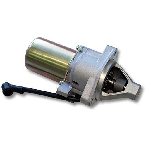 Amazon.com: Motor de arranque 13HP Lifan 389 ccm gasolina ...
