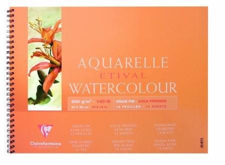 Notizbuch, 2110-Aquarellpapier 2110-Aquarellpapier 2110-Aquarellpapier 12 Blatt Etival feine Körnung, 300 g m², 18 x 24 – Lot de 5 B06W5BYRZX | Neuheit  518a6a