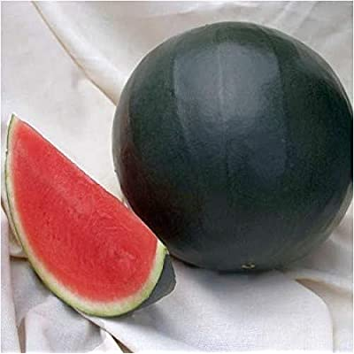 50pcs Watermelon Seeds for Planting Delicious Nutritious Sweet Natural Snack Organic Fruit Seeds for Planting Garden Courtyard : Garden & Outdoor