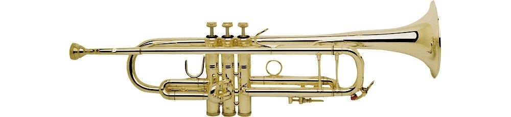 Bachmann 180 mlvg Stratocaster Stradivarius en B: Amazon.es ...