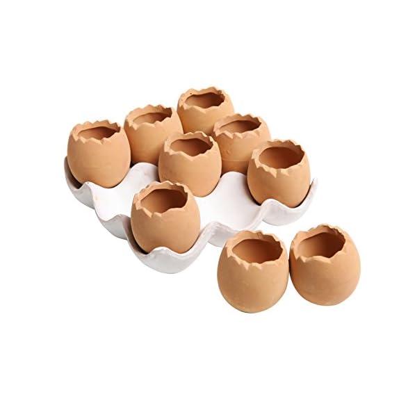 Adorable Set Of 9 Brown Eggs Design Ceramic Succulent Planters