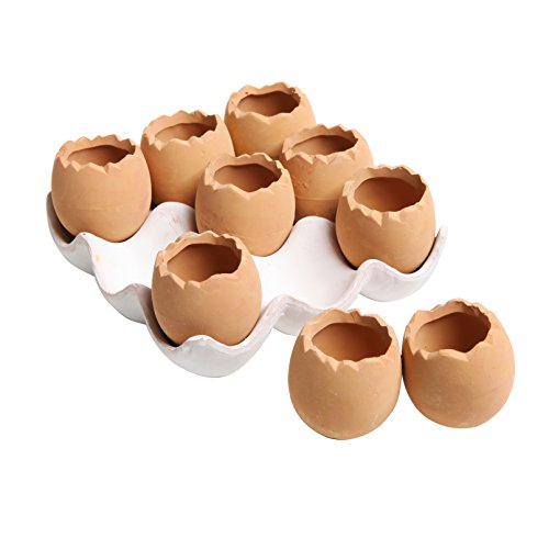 - Adorable Set of 9 Brown Eggs Design Ceramic Succulent Planters / Mini Decorative Pots w/ Tray - MyGift