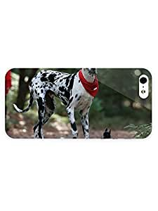 3d Full Wrap Case For Iphone 5/5S Cover Animal Great Dane And A Chihuahua