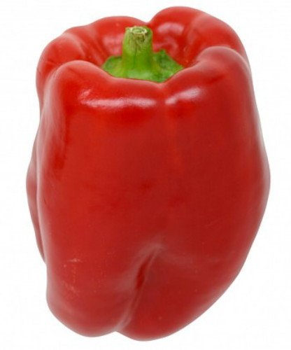 Keystone Peppers Seed (Keystone Giant Sweet Pepper - 20 Seeds - Huge)