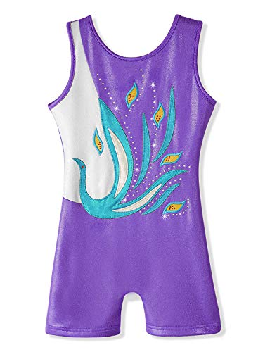 DAXIANG Gymnastics Leotard for Girl Dance Clothes Ballet for sale  Delivered anywhere in USA