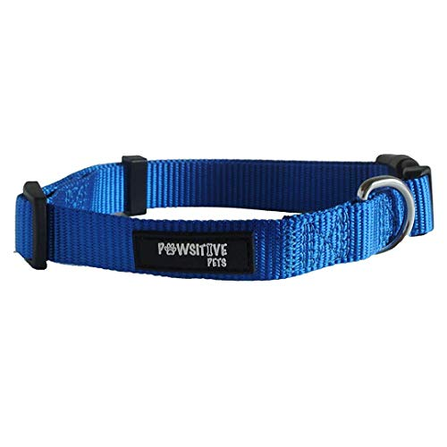 (Dog Collar, Buy a Collar. Feed a Dog. The Pawsitive Co Durable Nylon Puppy and Dog Collar with Chrome Plated D Ring - Extra Small - Blue)