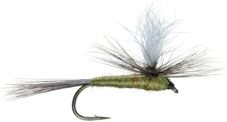 12QTY PARACHUTE BWO Fly Fishing Flies size 22