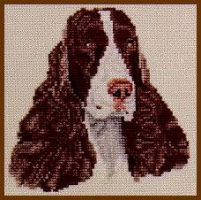 Pegasus Originals English Springer Spaniel Counted Cross Stitch Kit (Liver and (Springer Spaniel Cross)