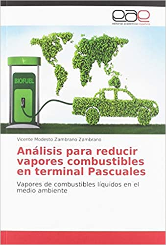 Analisis Para Reducir Vapores Combustibles En Terminal Pascuales