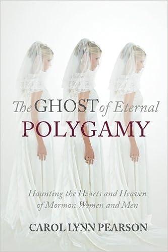 BEHIND THE POLYGAMY VEIL:a novel