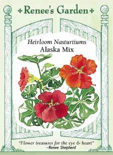 nasturtium-alaska-seeds