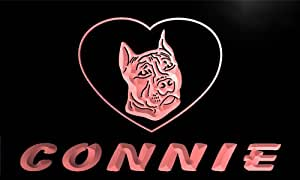 vdg106-r Connie Pit Bull Dog Name Love Neon Night Sign