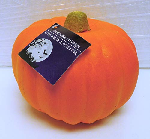 Carvable Foam Pumpkins