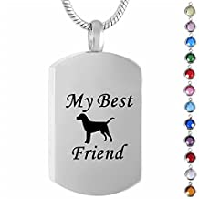 Memorial Jewelry Birthstone Personalized My Best Frined Pet Cremation Jewelry for Dog Ashes Urn Pendant