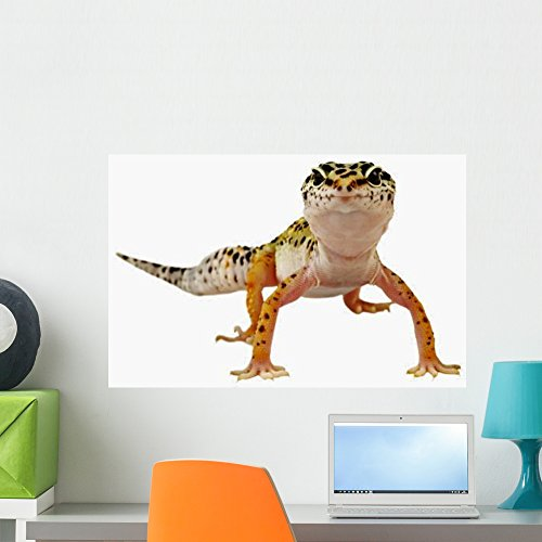 Wallmonkeys Leopard Gecko Wall Decal Peel and Stick Graphic WM154832 (24 in W x 16 in -