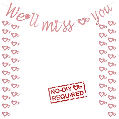 We'll Miss You Banner Going Away Party Supplies Glitter Rose Gold Banners for for Bon Voyage Farewell Retirement Graduation Office Party Decoration