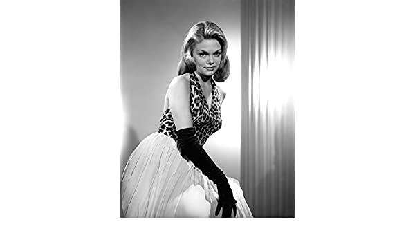 Dyan Cannon Heaven Can Wait 8 x 10 8x10 GLOSSY Photo Picture