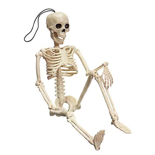 Creepy Human Skeleton Skull Figurine Scary Halloween Skeleton Prop Party Decorations ()