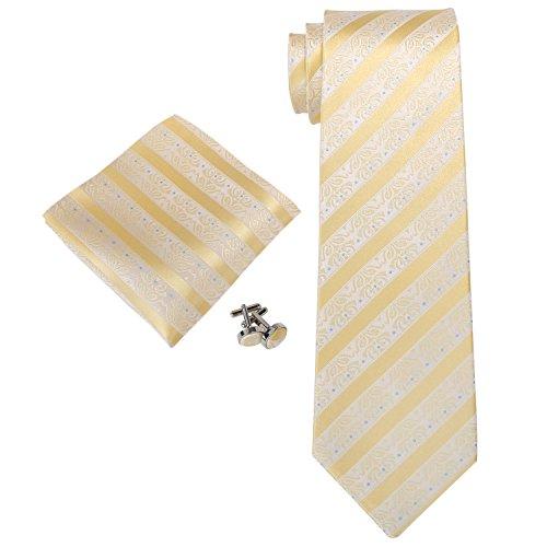 Landisun Mens Silk Neck Tie Set Floral and Stripe Pattern