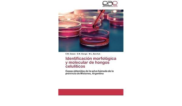 Identificación morfológica y molecular de hongos celulíticos ...