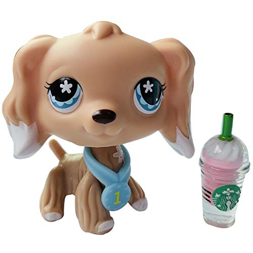 (Lps Cokser Spaniel Brown and Cream White Blue Star Eyes with lps Accessories Collars Satrabucks Collection Toy)