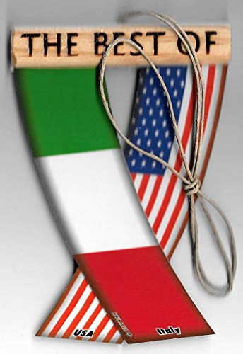 UNITY FLAGZ Italy and USA Italian American Italiano European Flag Rear View Mirror Hanging CAR Flags Mini Banners for Inside The CAR