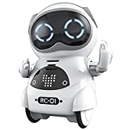 Haite Mini Robot