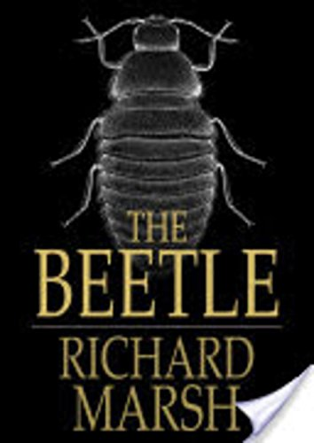 the-beetle-illustrated