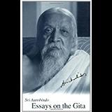 Essays on the Gita