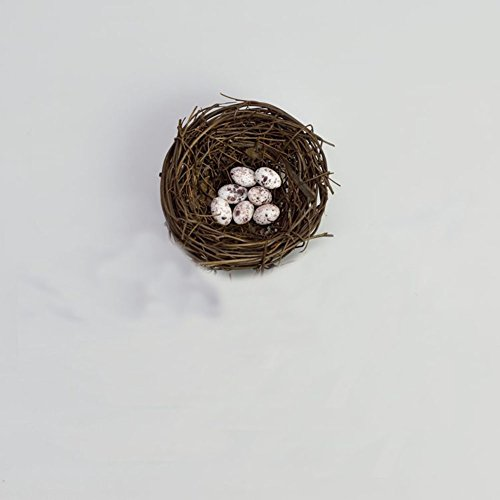 Home-organizer Tech Miniature Bird's Nest and Egg Fairy Home Garden Ornament Figurines Flower Pot Succulents Plant House Decor Bonsai Resin Craft Dollhouse Micro Landscape Decor (Japanese Furniture Miniature Garden)