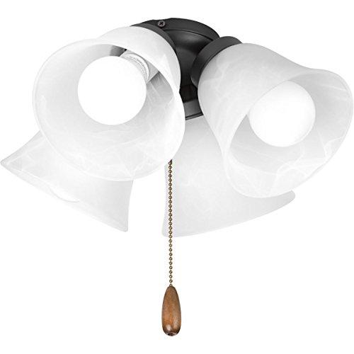Progress Lighting P2610-143WB Fan Light Kit, Graphite