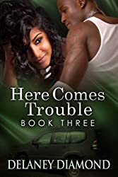 Here Comes Trouble (Hawthorne Family Book 3) (English Edition)
