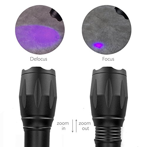 BESTSUN Bright UV Black Light Flashlight Zoomable Powerful CREE Ultraviolet LED Water Resistant 18650 or AAA Cat-Dog-Pet Urine Detector Bed Bug Finder Dog Stain Remover (with 18650 Battery & Charger) by BESTSUN