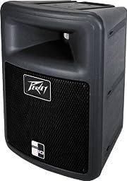Peavey PR 10 Inch 2-Way Speaker Enclosure