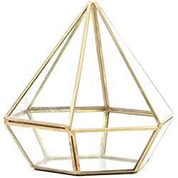 Koyal Wholesale Geometric Terrarium Glass Table Decoration, Planter for Succulents, Cactus, Air Plants, Indoor Plants, Outdoor Plants (Diamond, Gold)