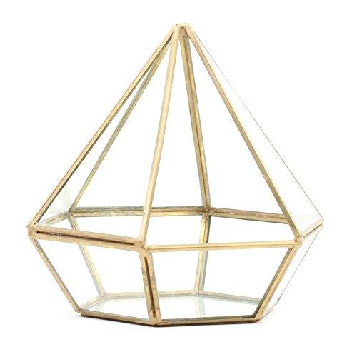 (Koyal Wholesale Geometric Terrarium Glass Table Decoration, Planter for Succulents, Cactus, Air Plants, Indoor Plants, Outdoor Plants (Diamond,)