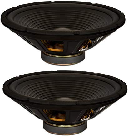 Goldwood Sound, Inc. Stage Subwoofer, OEM 15