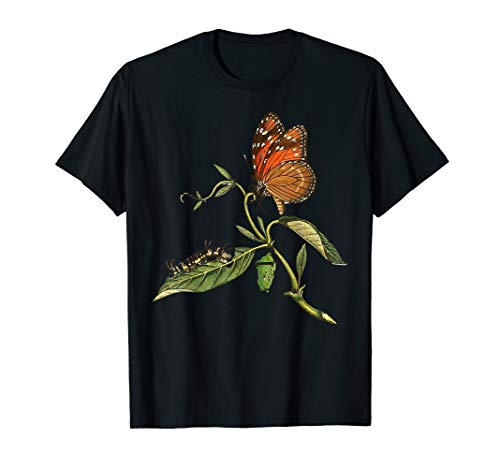 Monarch Butterfly Life Cycle T-Shirt Butterfly Tee Shirt ()