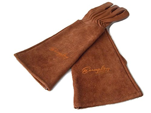 Rose Pruning Gloves for Men and Women. Thorn Proof Goatskin Leather Gardening Gloves with Long Cowhide Gauntlet to Protect Your Arms Until The Elbow (Small, Brown)