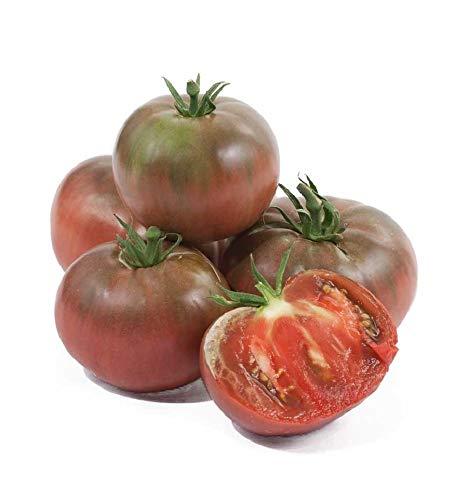 David's Garden Seeds Tomato Beefsteak Cherokee Purple 7533 (Purple) 50 Non-GMO, Organic, Heirloom Seeds