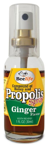 Propolis Spray with Honey and Ginger - 1 Fl Oz (30ml)